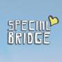 Special Bridge