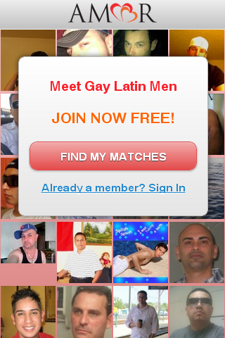 Gay Amor